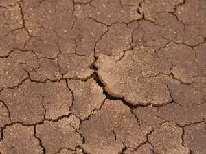 dried-mud